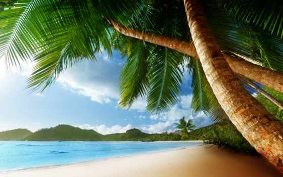 hawaii, тема, android, hawaiian,