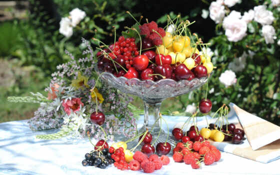 плод, cherry, ягода, great, натюрморт, фото