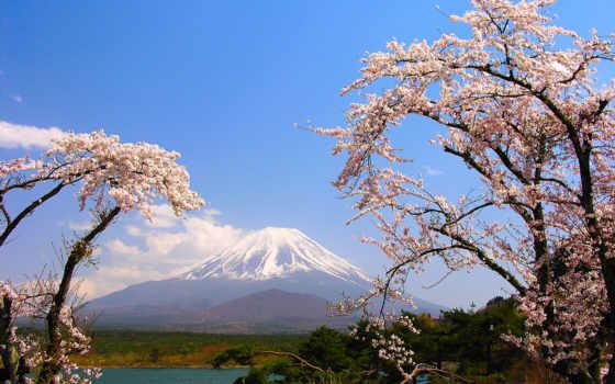 япония, японии, природа