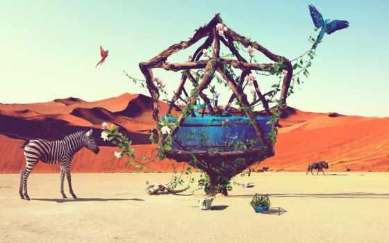 пустыня, живопись, life