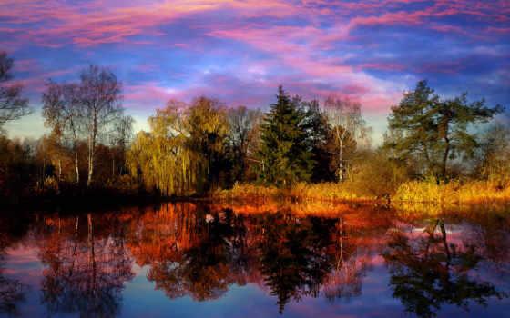 отражение, страница, windows, images, homes, are, landscape, sale,