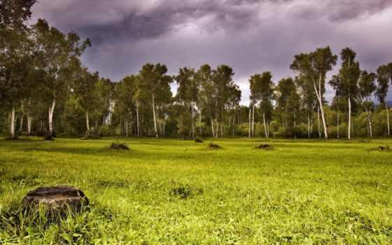 paisagens, marijuana, natureza, diferente, лесная, широкая, foto, inspiration, leaf, озера,