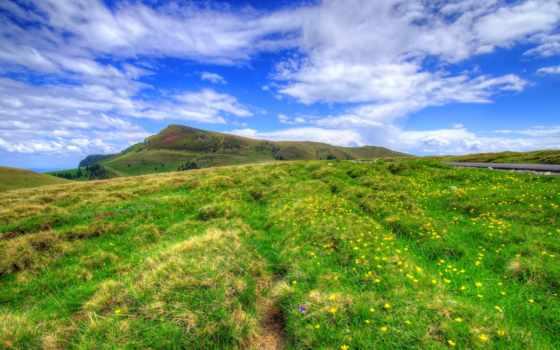трава, landscape, норвегия, природа, насекомые, цветы, red, hills,