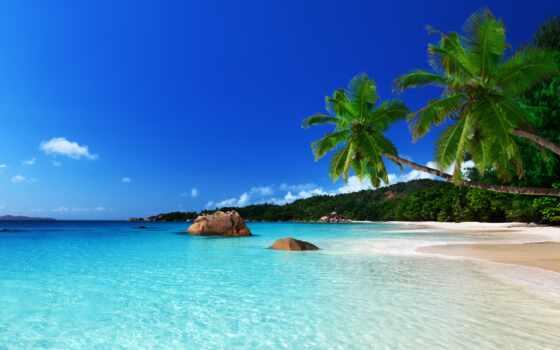 пляж, море, красивый, hotel, песок, summer, абонент, sun