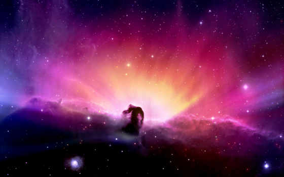nebula, голова, конская