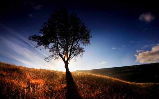 quotes, природа, god