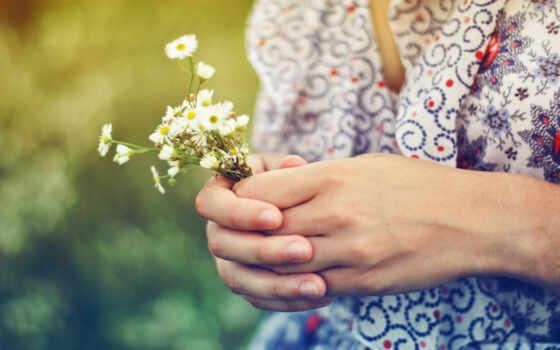 ромашка, девушка, букет, цветы, arm, поле, summer, настроение, свет, sun, фон