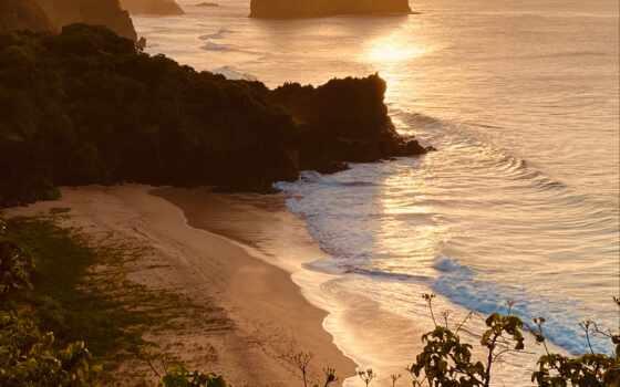 во, пляж, дневной, water, зелёный, barreto, тело, фернандо, близко, дерево, гряда