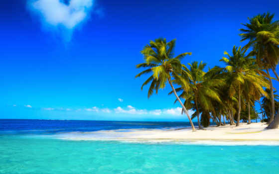 пляж, море, tropical