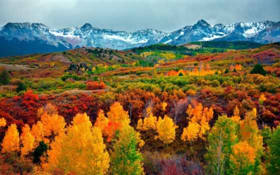 colorado, осень, сша, state, осени, aspen, природа, мест, красивая,