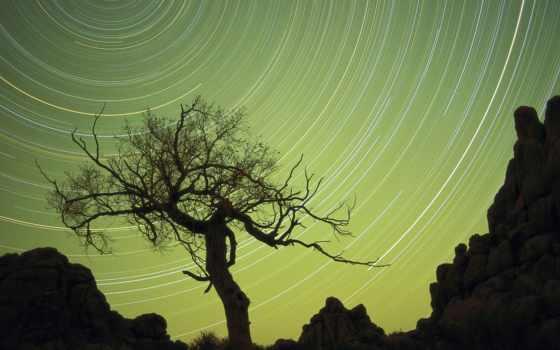 photography, tips, tricks, star, trails, pinterest, об, trail, ideas, фото,