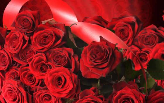 cvety, цветов, flowers, широкоформатные, розы,