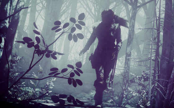 raider, tomb, взлёт, games, resolutions, desktop, лара,