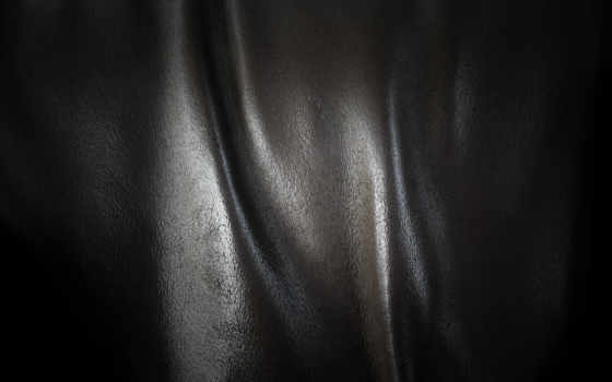 skin, кожи, skorpionchik, дневник, black, текстуры, leather, windows, gold, вид,