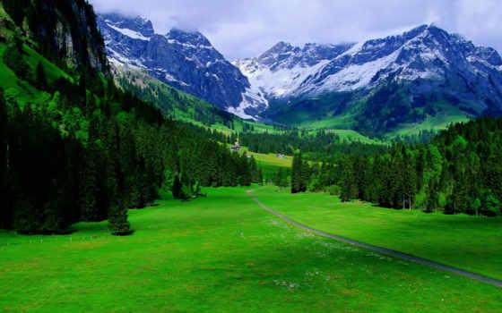 природа, природы, красивые, весь, экран, pics, dreem,