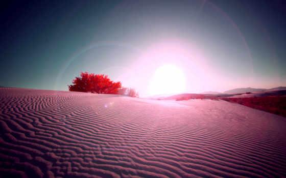 пустыня, песок, sun