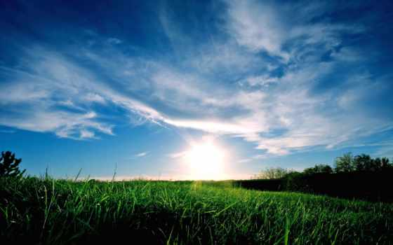 обои, солнце, tiamat, рассвет, облака, трава, крас