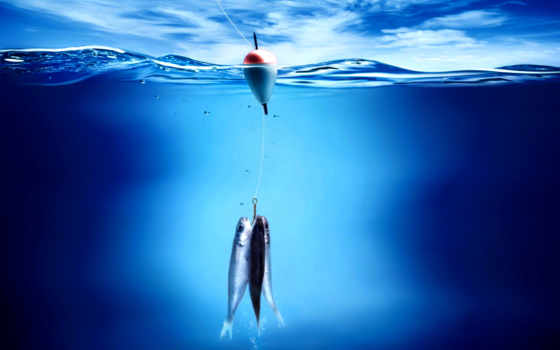 изображение, fishing
