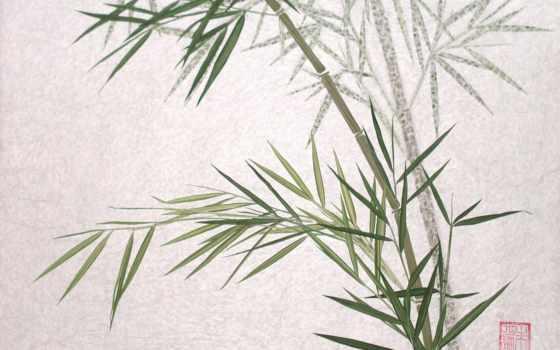 бамбук, art, full, free,