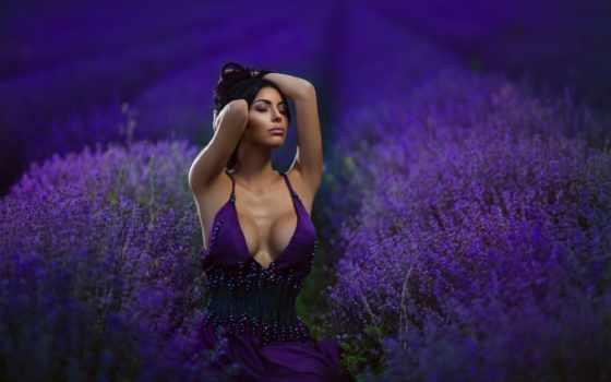 matrioshka, lavender, информация, прочитать, целикомв, цитатник, community, цитата,