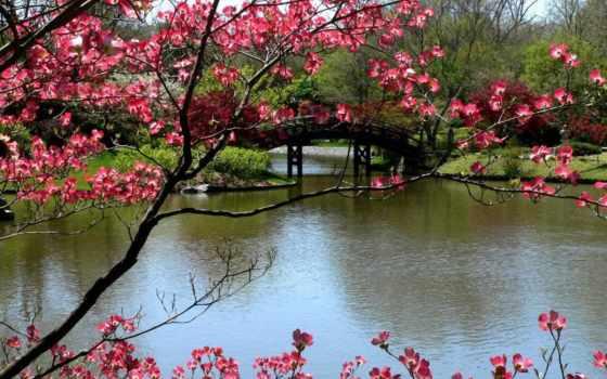 весна, природа, марта