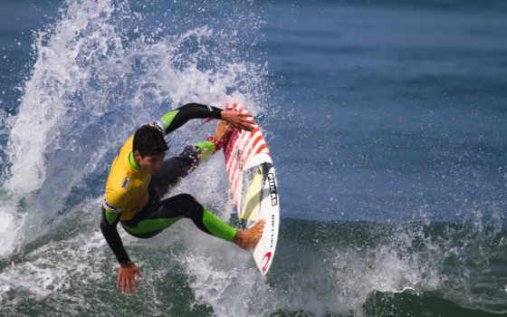 surfing, wave, free