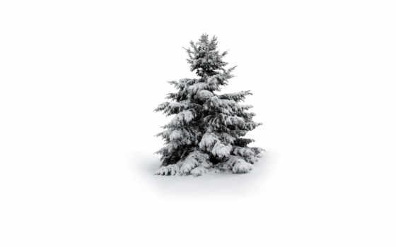 дерево, снег, winter Фон № 53290 разрешение 1920x1080