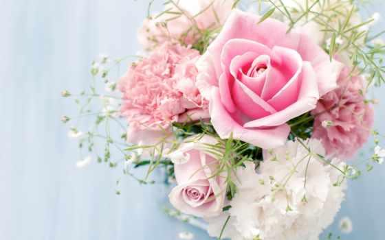 розы, цветы, букет