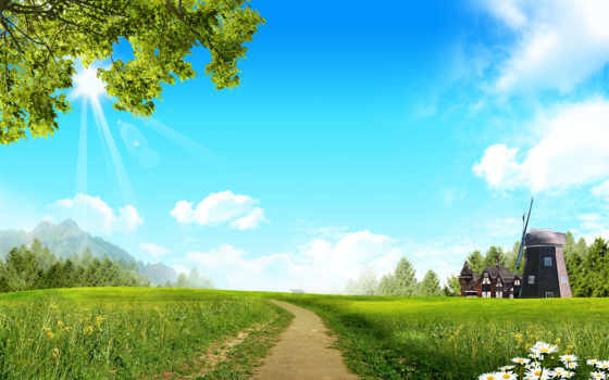 поле, ветряк, ромашки