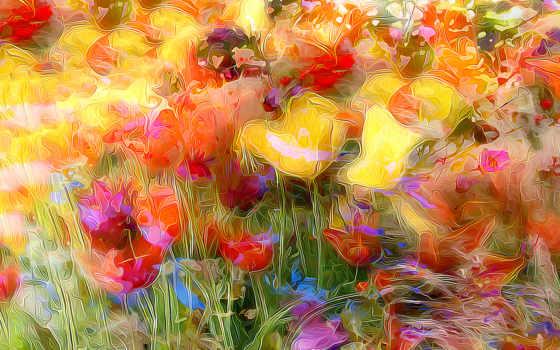 flores, fondos, campo, pantalla, prado, papéis, parede, fotos, imagens, imágenes,