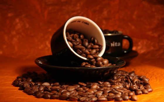 coffee, natural, отличить, подделки,