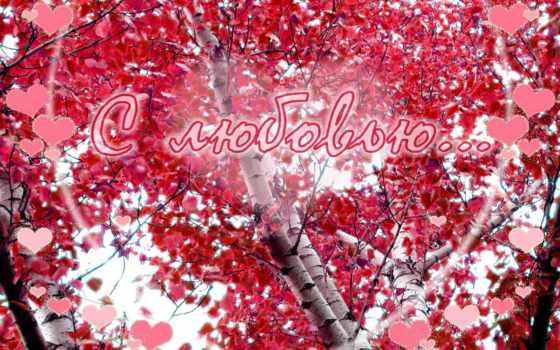love, best, любви, free, pk, imm, desktop,