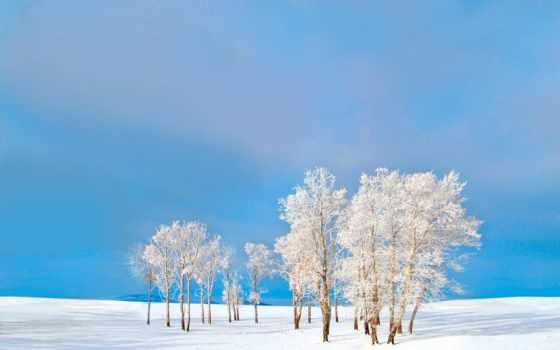 winter, природа, зимой, природы, rabstol, года, time,