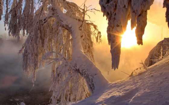 деревья, sun, лед, снег, рассвет, winter, света, утро, лучи,