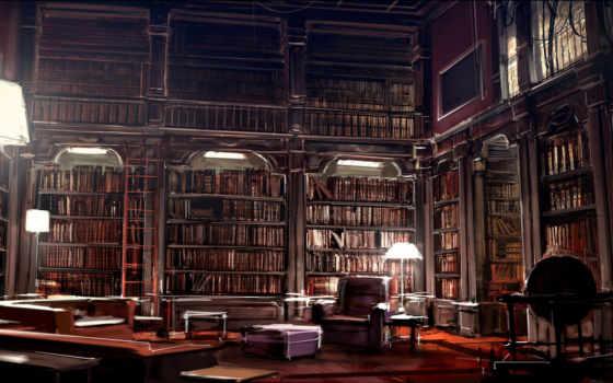 polki, книги, библиотека, картинка,