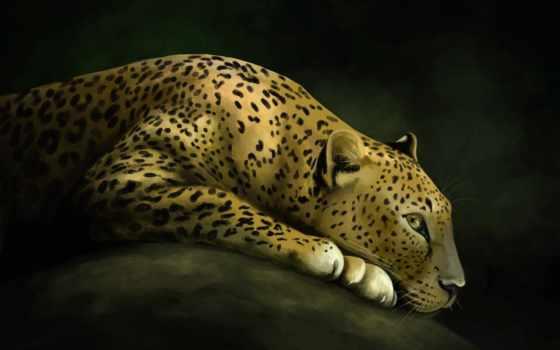 art, zhivotnye, кот, хищник, леопард, дикая, абстракция,