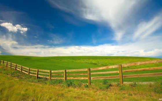 поле, небо, природа, landscape, hedge, trees, oblaka, забор,