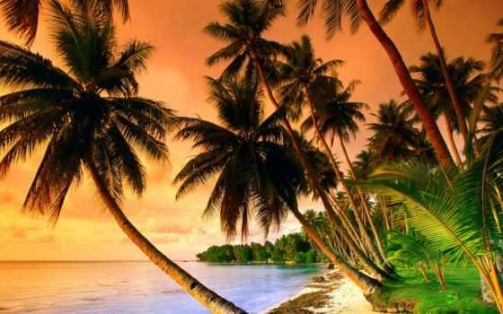 красивые, пейзажи -, удивительно, landscape, часть, природа, об, пляжи, море, подборка,