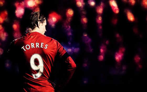 torres, фернандо, спорт, футбольные, ливерпуль, football, клубы, со, спины, картинку, back, картинка, поделиться,