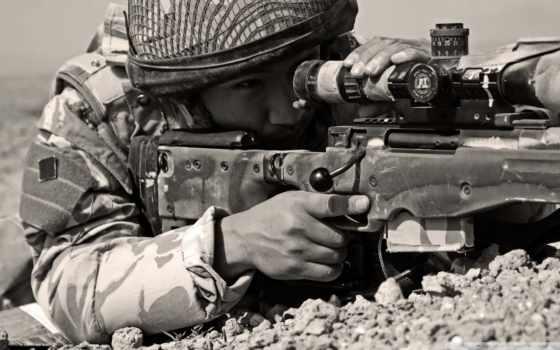 оружие, нояб, valoración