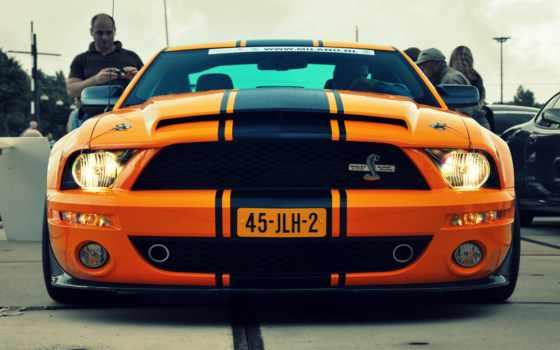автомобили, mustang, ford