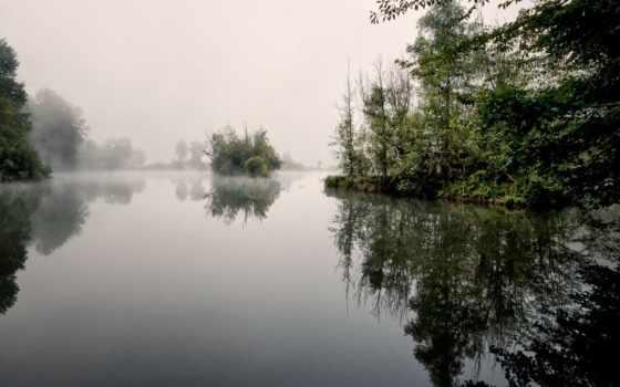 озеро, заводь, тихая, туман, утро, спокойного, collector, landscape, душевного,