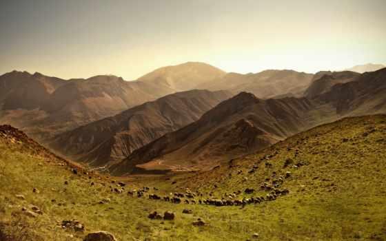 овцы, пастбище, стадо, горы, небо, рельеф, камни, margin,
