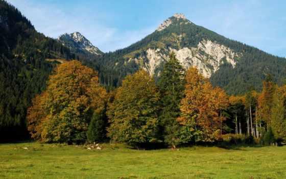 природа, los, горы