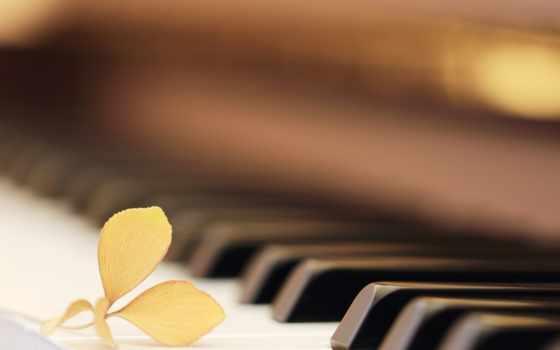 piano, нь, красивые, музыка, you, transportation,