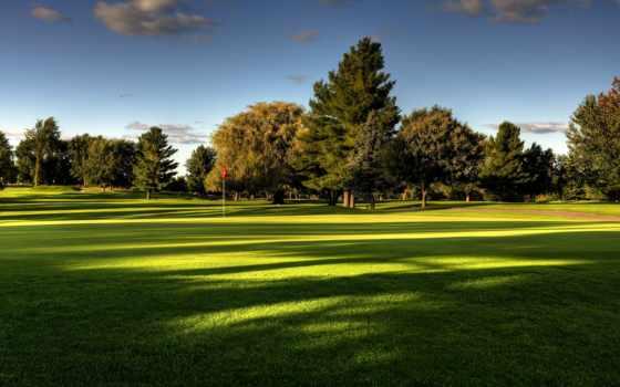 поле, trees, природа, трава, небо, гольфа, газон, golf, summer, landscape,