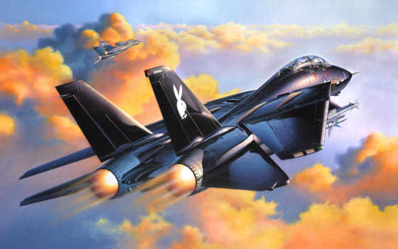 revell, tomcat, black, grumman, kit, scale,