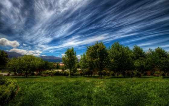пейзаж, priroda, деревя