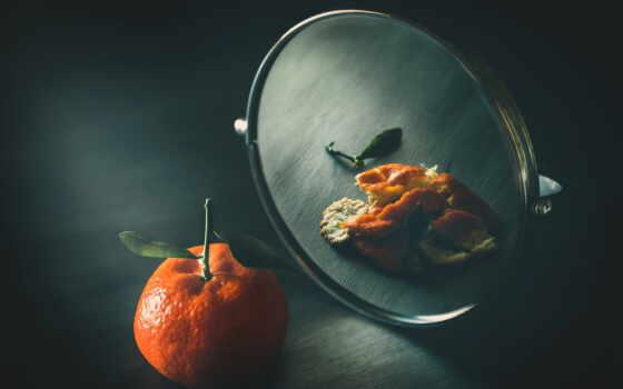 зеркало, meal, discover, pin, tangerine, mandarin, pinterest, own, glass