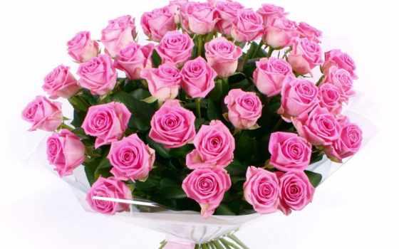 цветы, download, der, розы, розовые, красивый, die, букет, hintergrundbilder, rosen, liebe, rosa, роз, sprache,
